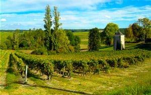 B-Wine-Tour-Bordeaux-Cognac