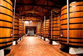 B Wine Tour - Bordeaux - Chateau Chais