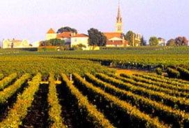 B Wine -Wine Tours Medoc